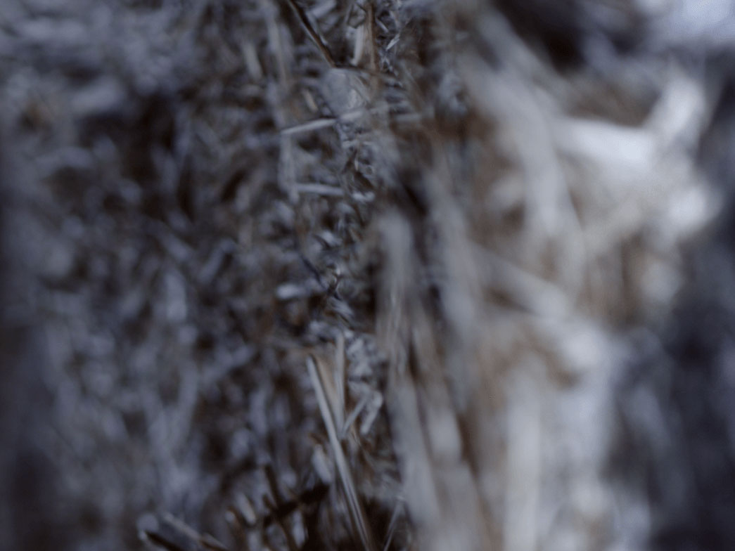 Minéralités, 2014 - Video